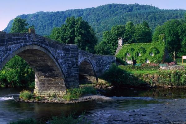 Antiguo puente de piedra en plena naturaleza