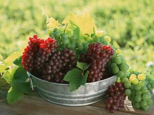 Uvas verdes y moradas