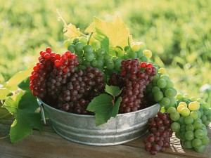 Postal: Uvas verdes y moradas