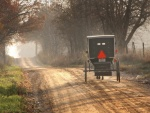 Caballo con calesa de Amish, cerca de Topeka, Indiana