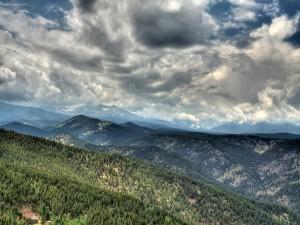 Postal: Bosque en las montañas, bajo un techo de nubes