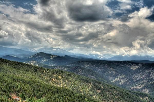 Bosque en las montañas, bajo un techo de nubes