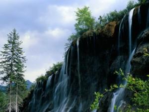 Postal: Agua cayendo por la piedra