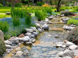 Postal: Un pequeño río en el jardín