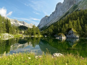 Postal: Valle de los Lagos de Triglav (Eslovenia)