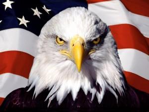 Postal: Águila con la bandera norteamericana de fondo