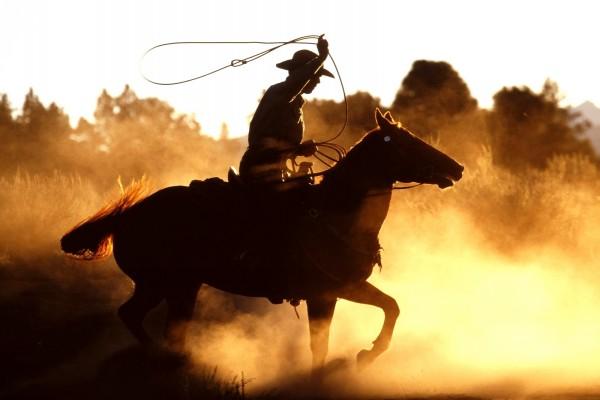 Vaquero americano con el lazo