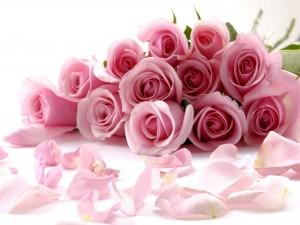 Postal: Un ramo con una docena de rosas rosadas