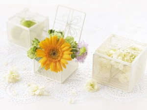 Postal: Flores en cajitas