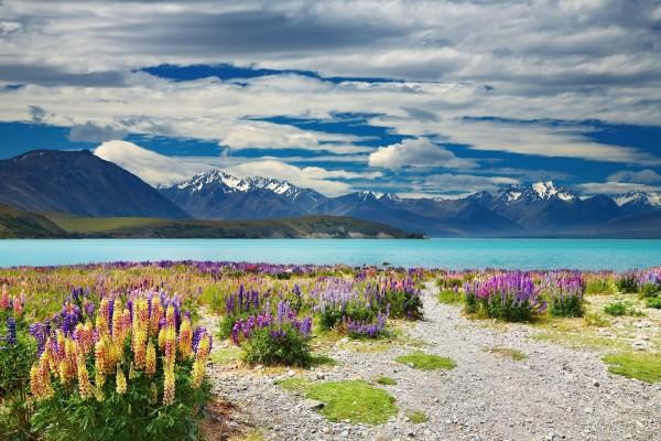 Lago Tékapo, en la Isla Sur de Nueva Zelanda