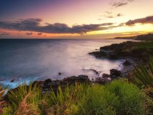 Puesta de sol en la costa de Kauai (islas Hawai)