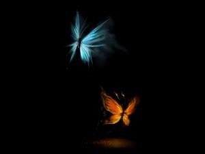 Postal: Mariposas de hielo y fuego