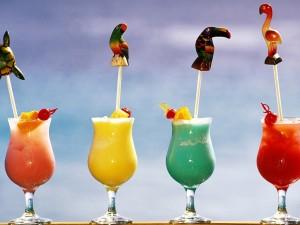 Postal: Cócteles de colores con adornos tropicales