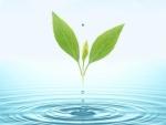 Agua y vida