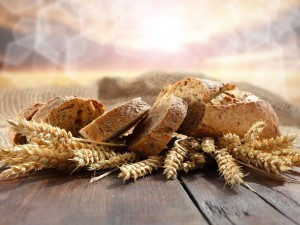 Rebanadas de pan sobre unas espigas de trigo