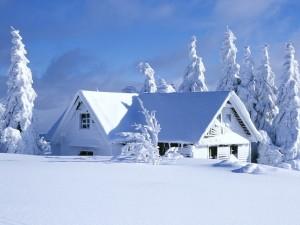 Cabaña cubierta de nieve