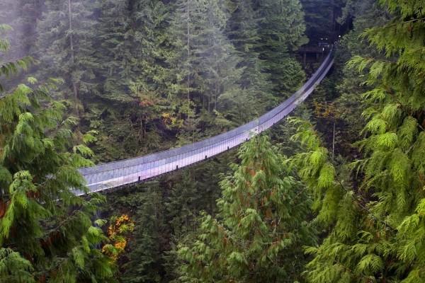 El Puente Colgante de Capilano (Columbia Británica, Canadá)