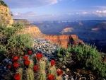El Gran Cañón del Colorado (Arizona, Estados Unidos)