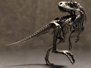 Esqueleto de un Tyrannosaurus rex