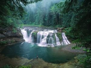 Postal: Cataratas inferiores del río Lewis, Gifford Pinchot National Forest, Washington, EEUU