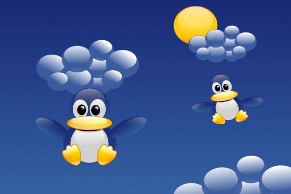 Pingüinos volando
