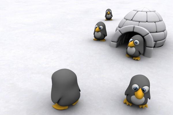 Mini-pingüinos