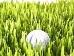 Bola de golf entre la hierba