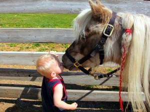 Postal: Niño rubio besando a un poni