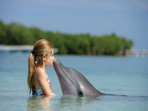 Niña jugando con un delfín