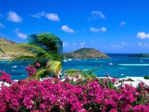 Isla caribeña de Saint Barths