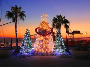 Postal: Amaneciendo el día de Navidad