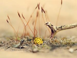 El bocado mortal de la serpiente