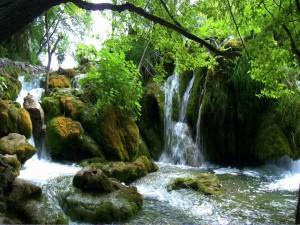 Postal: Cascadas en el Parque Nacional de los Lagos de Plitvice (Croacia)