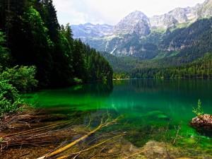 Lago de Tovel (Trento, Italia)