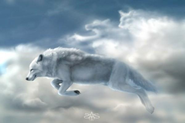 Lobos blancos en el cielo