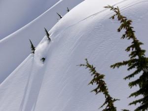 Postal: Snowboard en nieve virgen