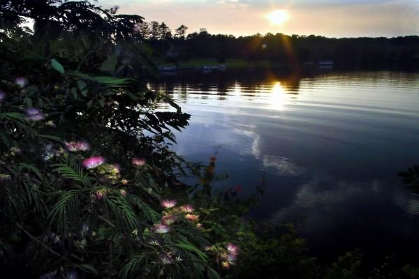 Cayendo la tarde sobre un pequeño lago