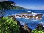 Costa de Maui (Islas Hawái)
