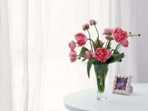 Peonías rosas en un jarrón de cristal