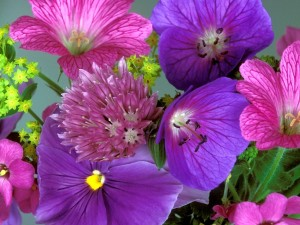 Conjunto floral en tonos lilas