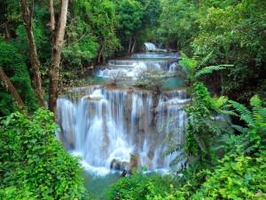 Preciosas cascadas en Kanchanaburi (Tailandia)