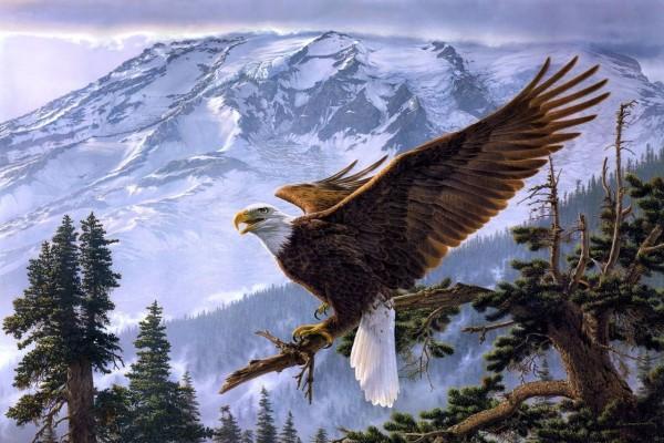 Águila con las alas abiertas en la rama de un árbol