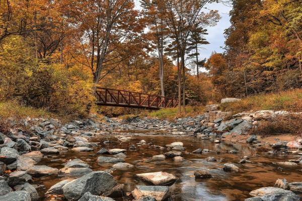 Wilket Creek Park (Toronto, Canadá)