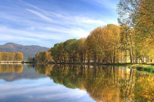 Árboles reflejados en las aguas de un lago en calma