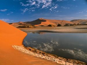 Postal: Oasis en el desierto
