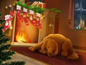 Calcetines para Papá Noel
