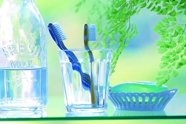 Agua, dos cepillos de dientes y un jabón
