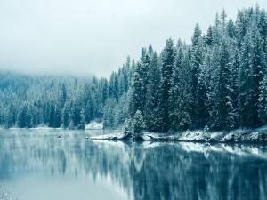 Postal: Río Kootenay (Columbia Británica)