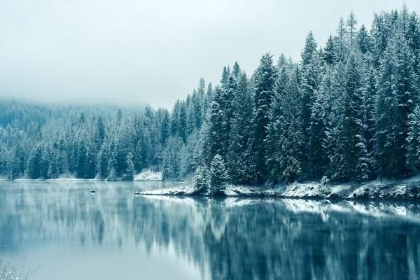 Río Kootenay (Columbia Británica)