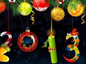 Decoración del Nuevo Año 2013